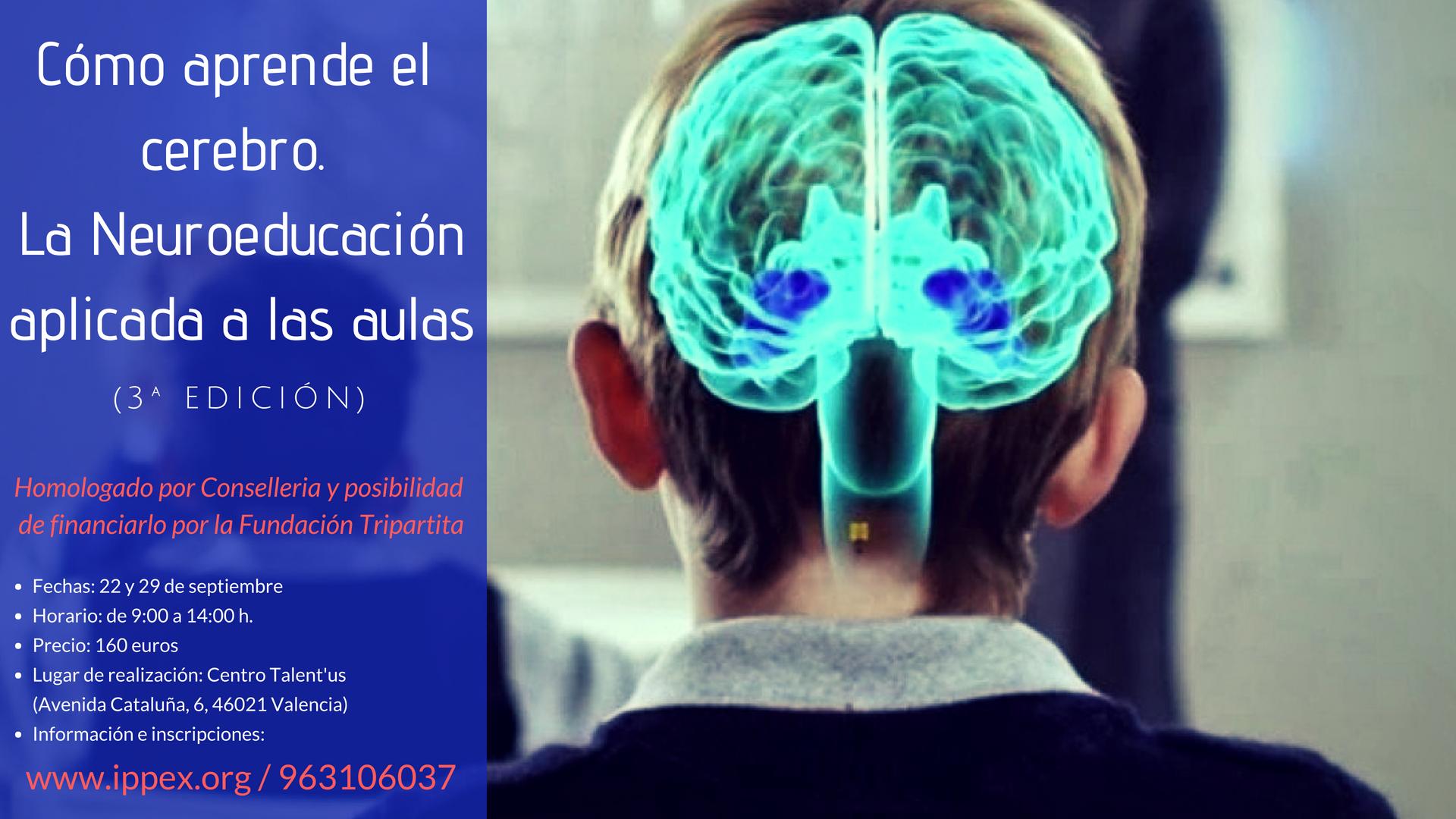 neuroeducación III